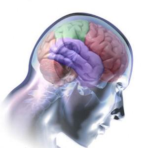 mozak, мислене