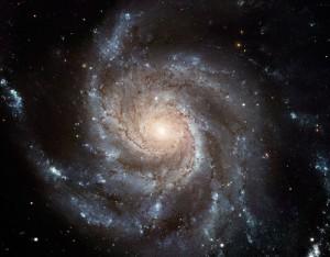 zvezdi небе